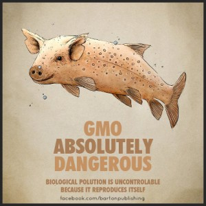 GMO-Absolutely-Dangerous-FB-BP-300x300[1]